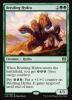Borstige Hydra - Bristling Hydra (EN)