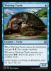 Gedeihende Schildkröte - Thriving Turtle (EN)